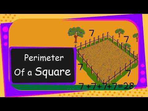 Maths - Perimeter of a Square - English