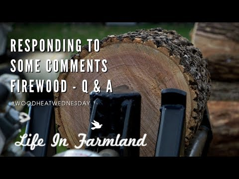 Q& A   Answering Some Comments / Questions - Wood Heat Wednesday - EP: 3