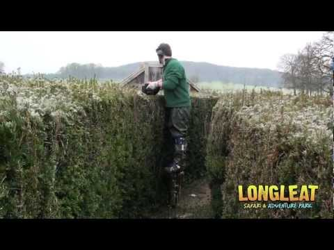 Longleat Maze Takes High-tech Approach to Hedge Trimming