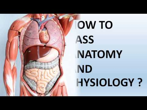 How To Pass Anatomy And Physiology-Medical Students