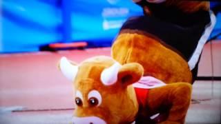 Cooly - European Athletics Mascot 2014