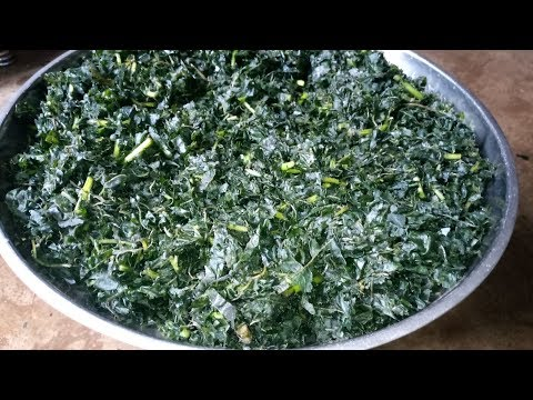 How to wash Bitter Leaf: Fastest Way to Remove Bitterness from Bitter Leaves