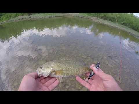 Fishing A ULTRA Shallow Stream + Topwater Blow Ups!!