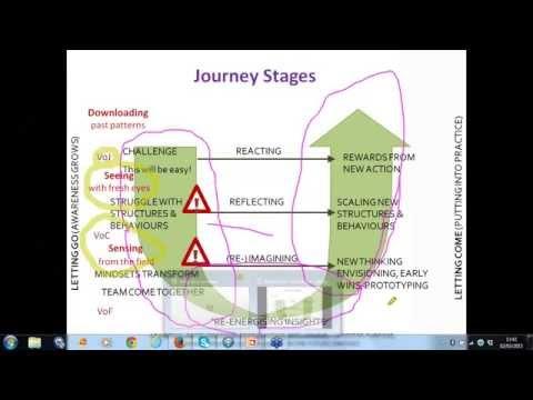 Systemic Team Coaching Webinar Series - Diving deep: Culture change
