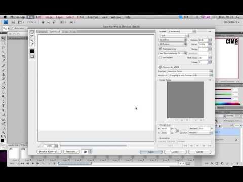 Photoshop Basics : How to make basic animation / moving images