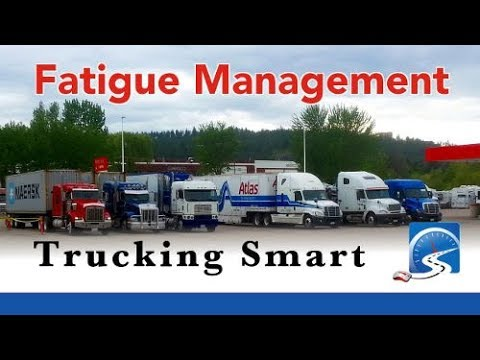 Don't Fall Asleep While Driving - Manage Your Fatigue