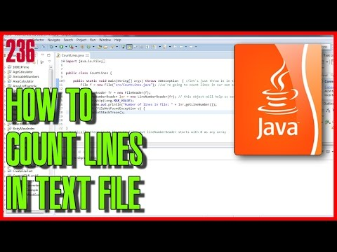 JAVA How to count lines in text file