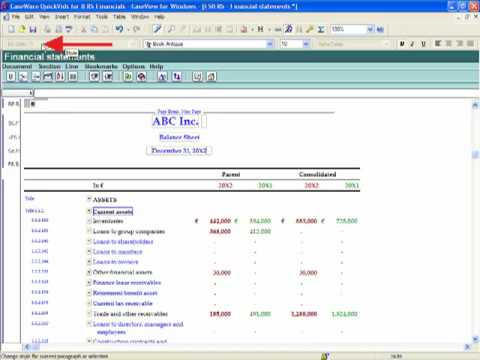 IFRS Financials: Working in the Financial Statements - Working with Styles