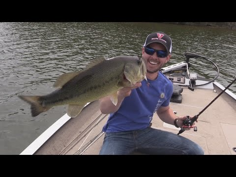 Bass Fishing Percy Priest Lake in Nashville Tennessee