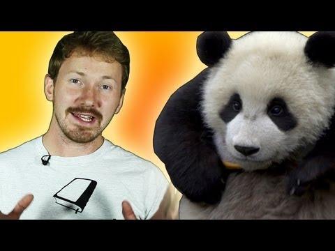 Panda Extinction: Should we let it happen? | Zoo La La (Ep 52) | Earth Unplugged