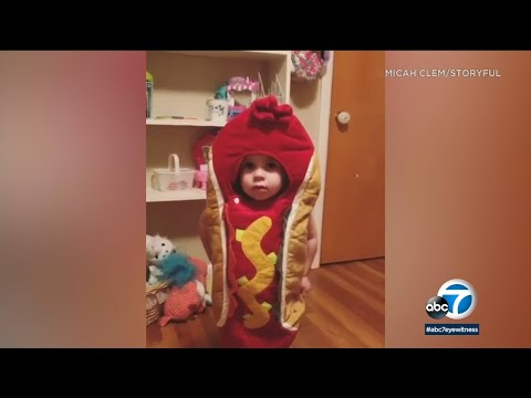 Xxx Mp4 Hot Dog Girl Dad Keeps Promise To Daughter Lets Her Wear Adorable Costume To Bed I ABC7 3gp Sex