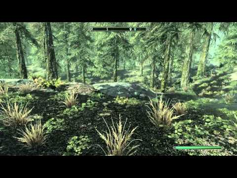 Skyrim Guides: How to get a dog companion in Skyrim