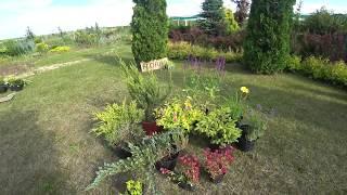 """комплект растений для клумбы """"001"""""""