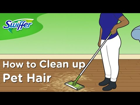 How to Clean Dog and Cat Hair with Swiffer Sweeper - Ep. 3 | Swiffer