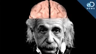 By any and all measures, Einstein was a genius. But what made him so different from any other person? Turns out his brain was wired in a very different way! Anthony takes a look inside to show you the ways in which Einstein