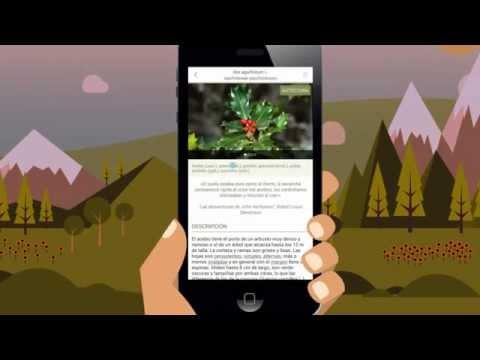 ArbolApp: clasifica los árboles,  fácil y seguro.