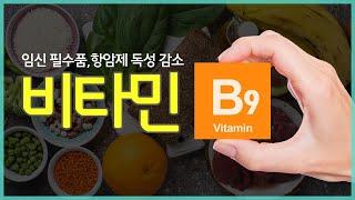 임신 필수품, 항암제 독성 감소 작용까지! 비타민 B9, 엽산!
