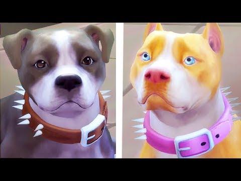 PITBULLS // THE DUKE AND DUTCHESS   THE SIMS 4 —  CREATE A PET