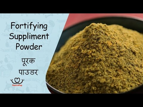 How To Make A Fortifying Supplement Powder For Your Dog At Home || Gastro Pup