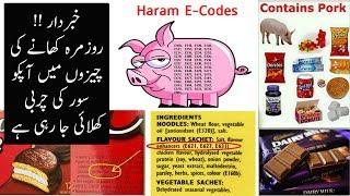 What Are E - Ingredient Codes | Rozmara Ki Chezon mein Pig ki Charbi ka Istmal | Urdu / HIndi