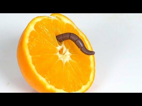 SURPRISE INSIDE FRUIT!