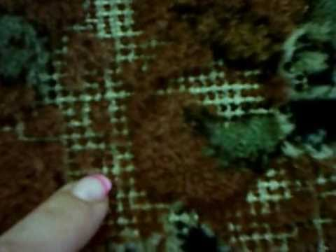 Why it is important to vacuum your entire rug- Moth damage-by Luv-A-Rug