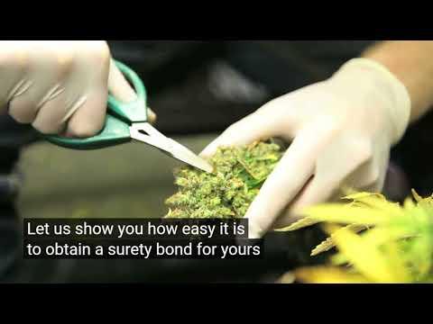 Medical Marijuana Dispensary Bond