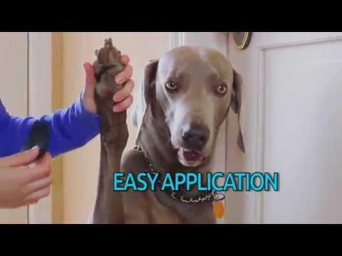 Paw Savers Video