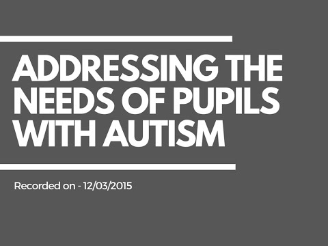 Teaching Assistants SEN Resources   Addressing the needs of pupils with Autism