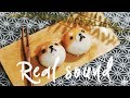 [SUB][REAL SOUND] 'Shiba-inu' Honey Rice Cake ~* : Cho's daily cook