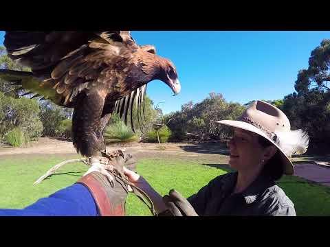 Experience the beauty of Kangaroo Island