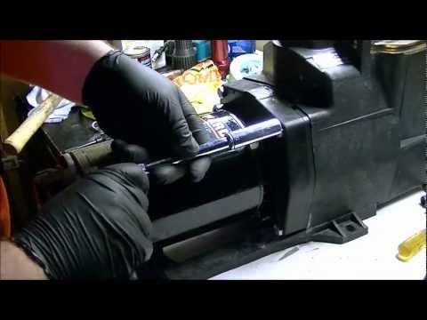 Hayward Super Pump Seal Replacement