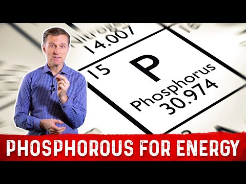 The Importance of the Mineral Phosphorous for Energy