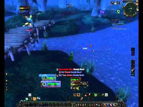 Level 20 Hunter solo outland