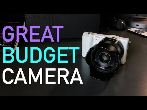 Sony Alpha A5100: The Best Camera Under $500?