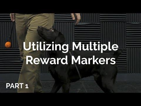 Utilizing Multiple Reward Markers