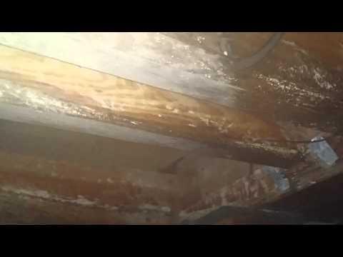 Spray vs wiping mold