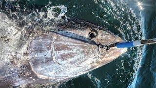 Amazing Giant Bluefin Tuna Fishing Skill, Catching Tuna on The Big Sea