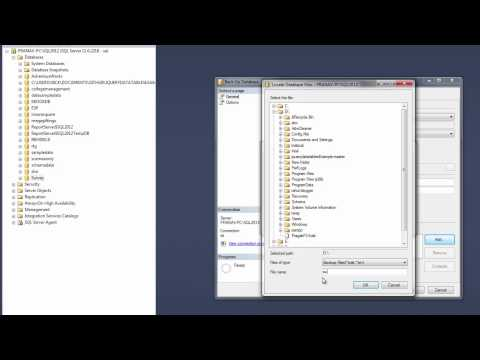 Restore a Database Backup (SQL Server Management Studio)