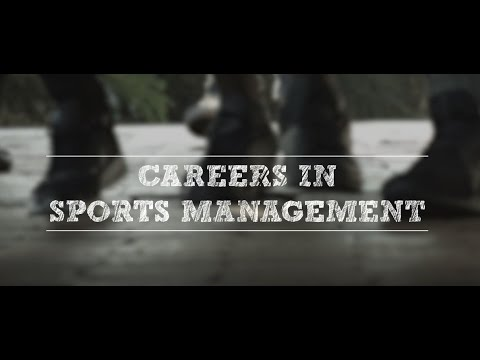 Careers at Boston - Sports Management