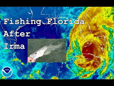 Fishing Florida After Irma