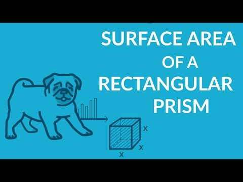 ʕ•ᴥ•ʔ Find the Surface Area of a Rectangular Prism with ease