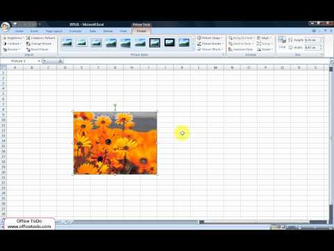 Excel | How to insert image into the cell?