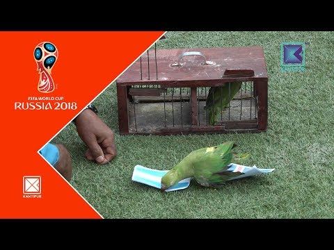 Offside | Pattu Prediction | World Cup Special | 16 June 2018