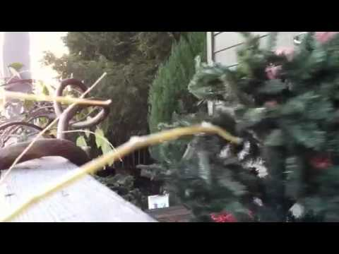 Cleaning an artificial tree