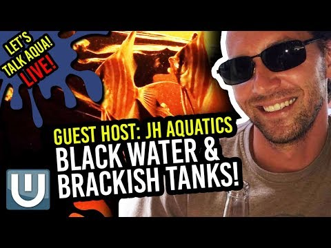 Going Black Water and Brackish with JH Aquatics!