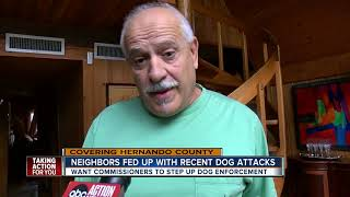 Several vicious dog attacks prompt Hernando County to look into better enforcement