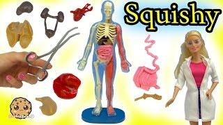 Squishy Human Anatomy with Scientist Teacher \u0026 Student Video