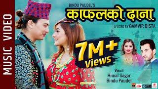 Kafalko Dana - New Nepali Song 2019 || Himal Sagar, Bindu Paudel Ft. Paul Shah, Aanchal Sharma