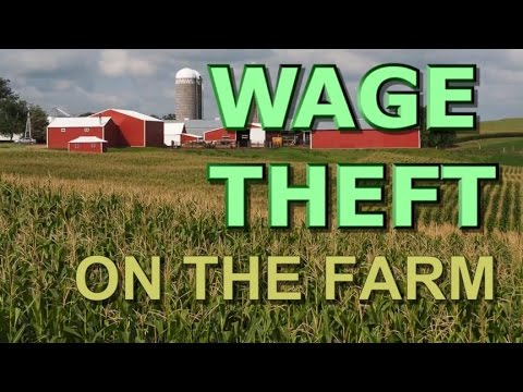 Wage Theft on the Farm